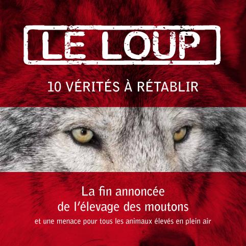 loup-verites-danger