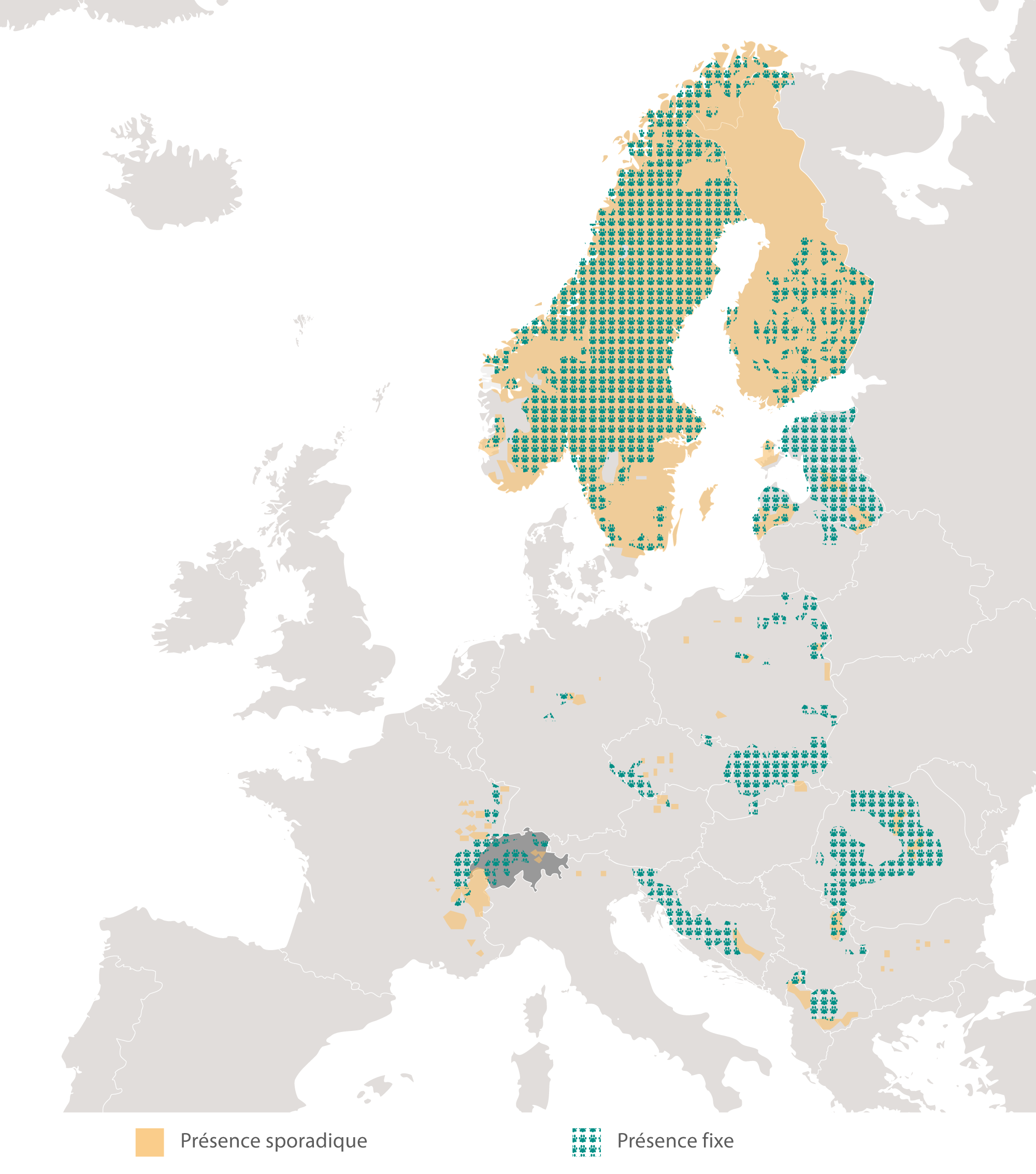 lynx europe